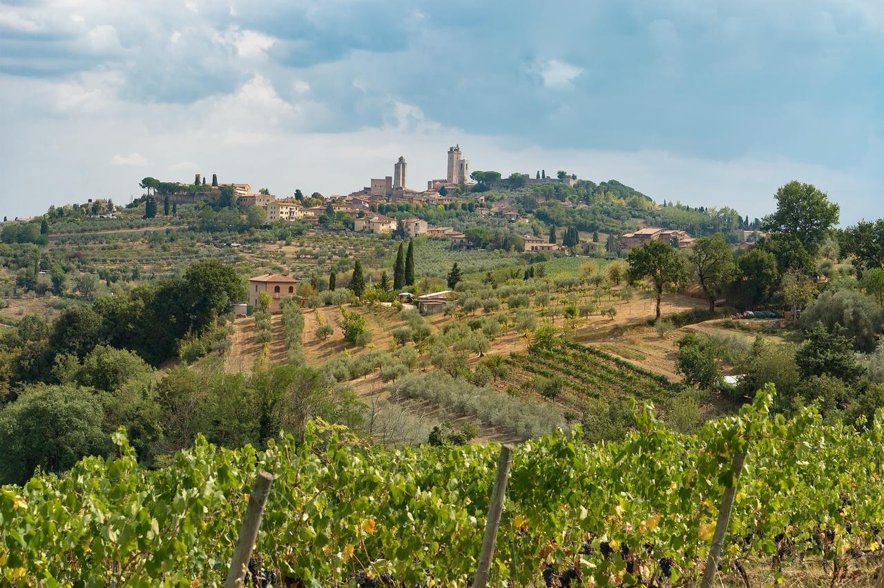 San Gimignano - Hotel Villasanpaolo, a view